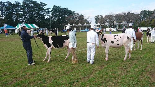 酪農畜産フェスティバル05