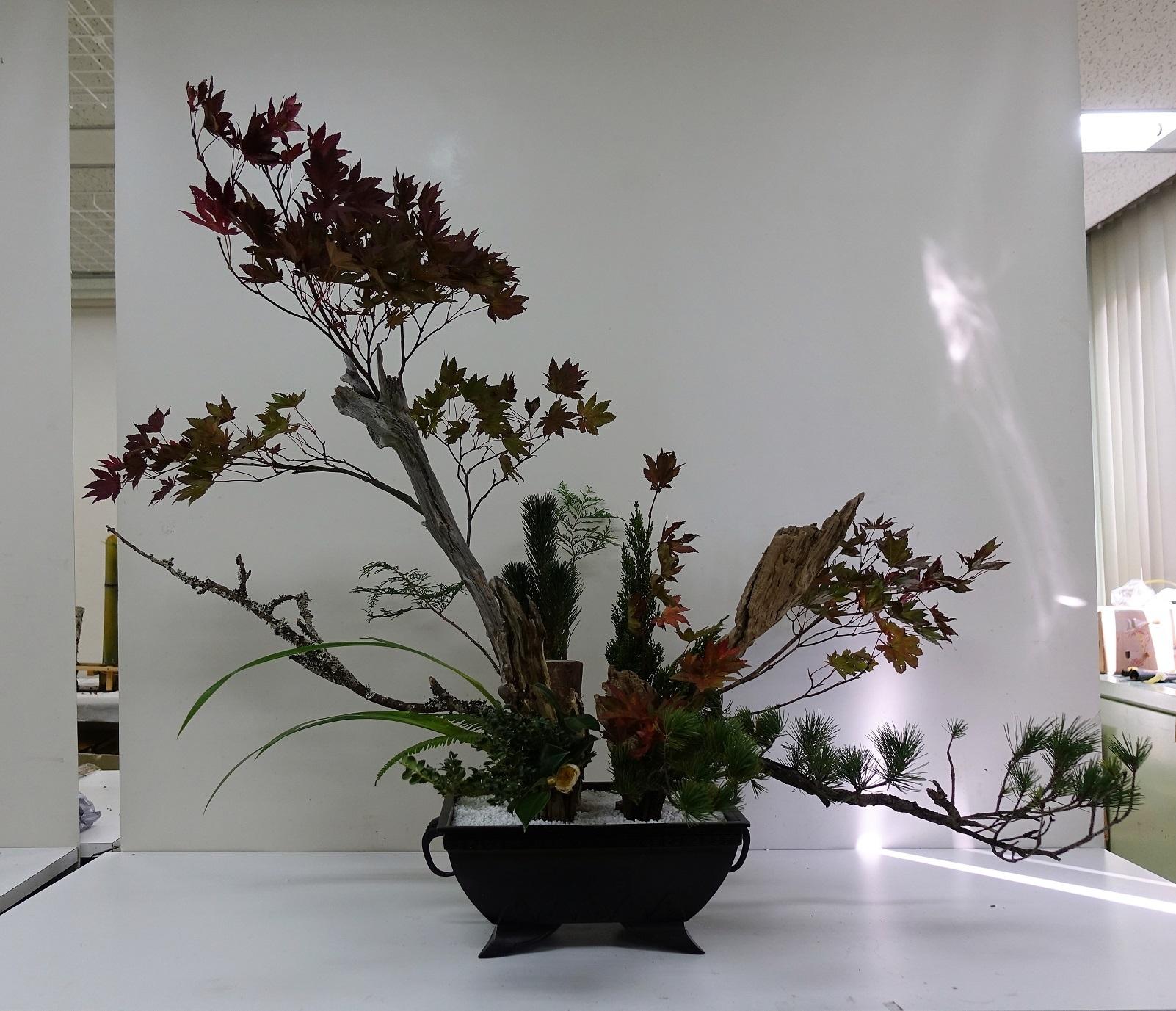 紅葉の2株砂物