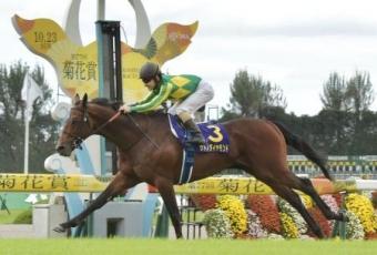 【競馬】 もし、サトノダイヤモンドが今引退したら歴代でどのくらいの馬に相当するの?