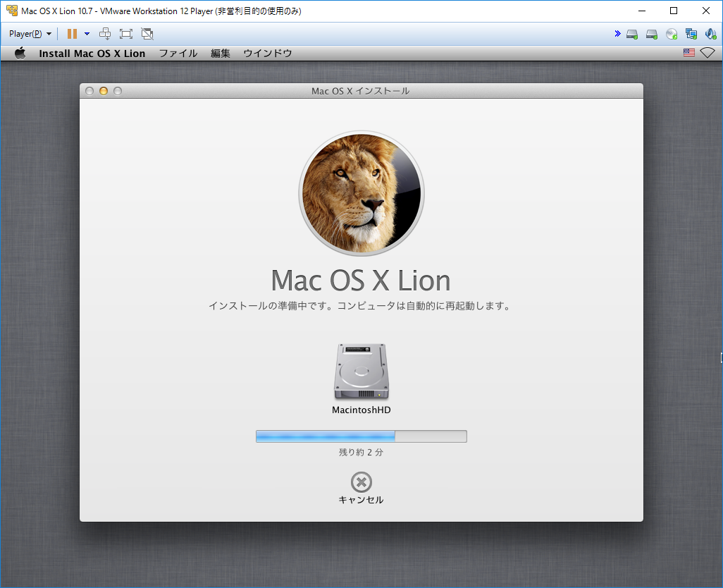 LionInstall9_10.png