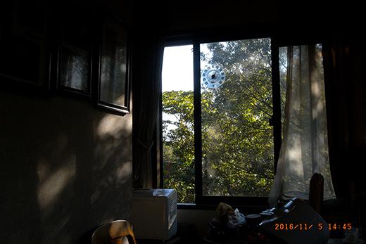 R0031342.jpg