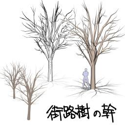 街路樹 広葉樹 の幹02 O0 かりおきば