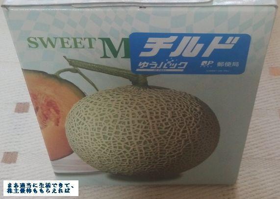 eslead_melon-01_201603.jpg