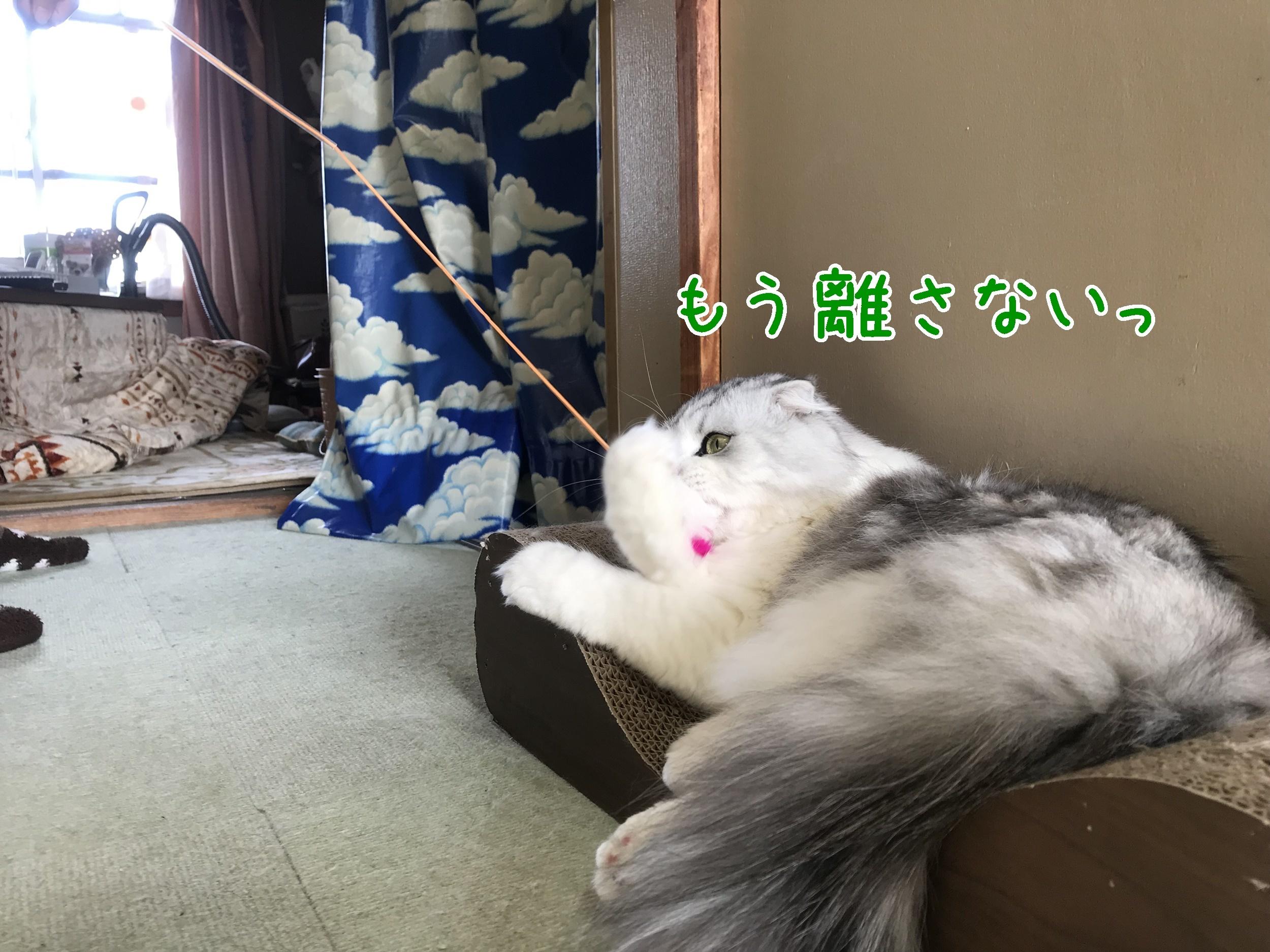 20181216-102512-01.jpg