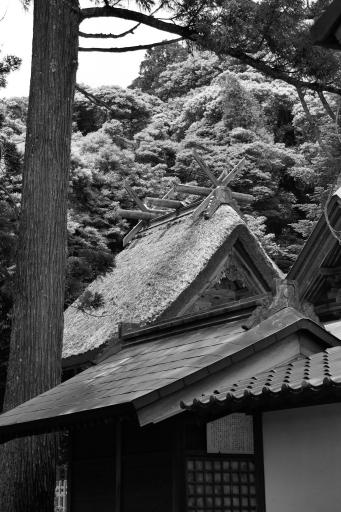 玉若酢命神社の御本殿