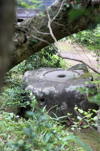 長台寺本坊の塔芯礎