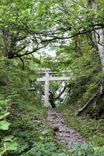 大神山神社の山中の鳥居