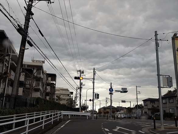20161109_084632_R.jpg