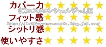 イッツトップ プロフェッショナル デュアル コンシーラー&ブラッシュイッツスキン コンシーラー-001