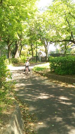 6歳 自転車