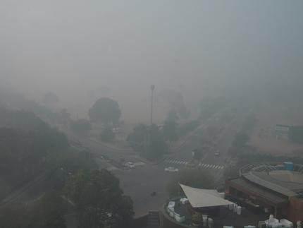 インド 霧