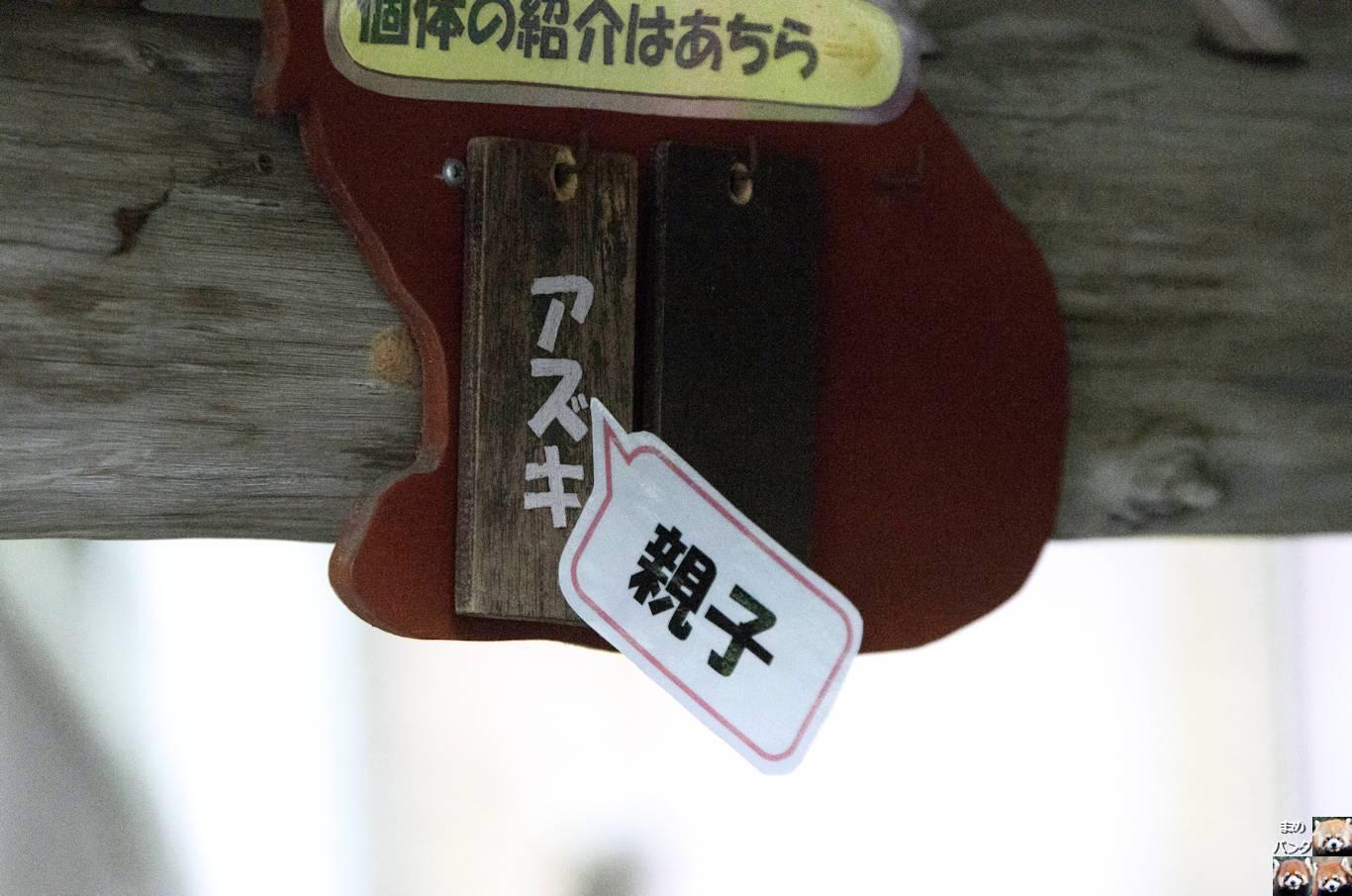 099_8069.jpg