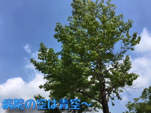 病院の空は青空