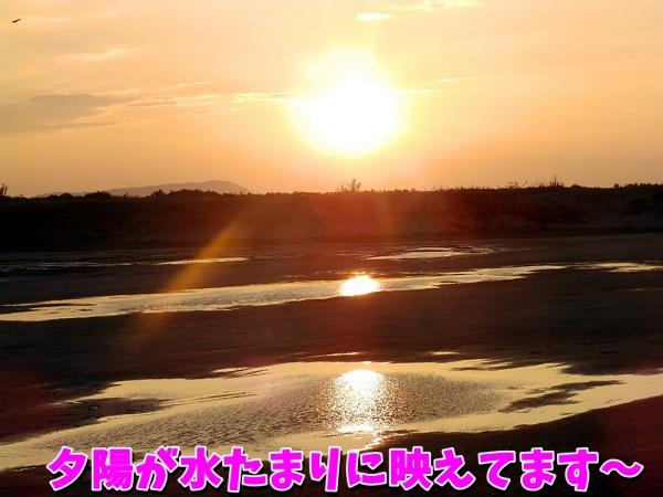 夕陽が水たまりに