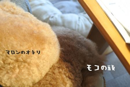 DSC_4051.jpg