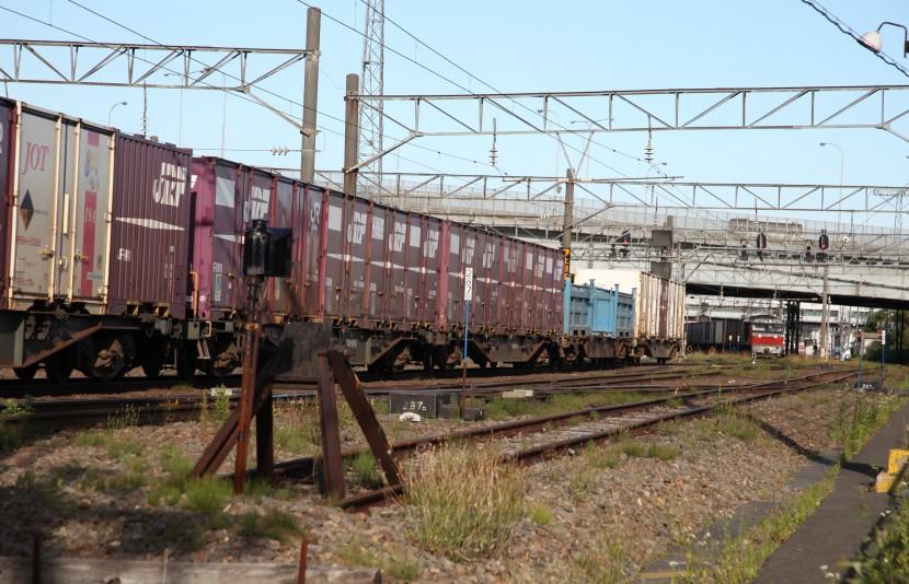 DF117IMG_5523-3.jpg