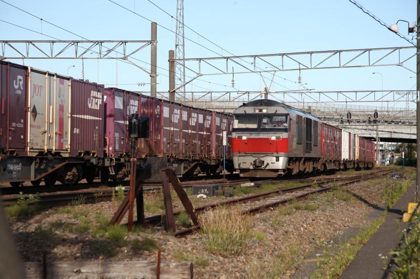 DF117IMG_5526-1.jpg