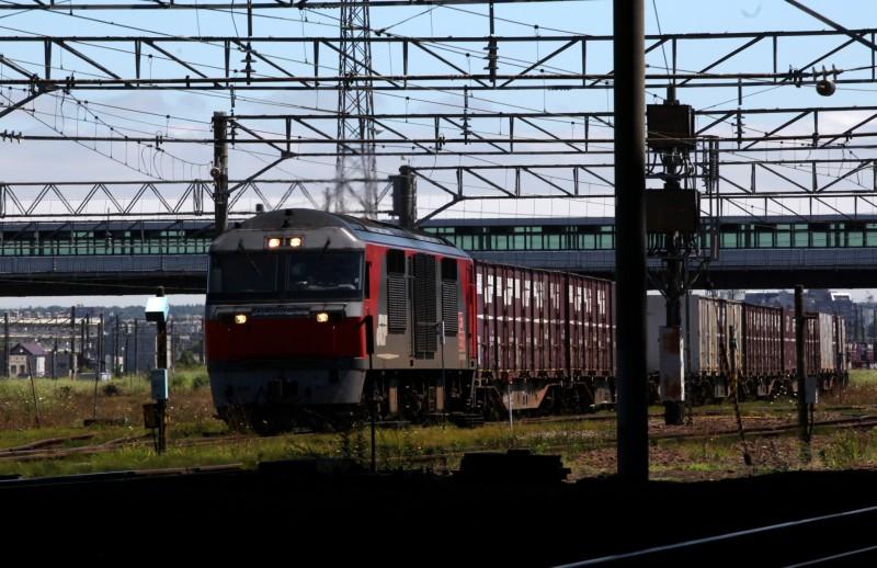 DF52IMG_5565-23.jpg