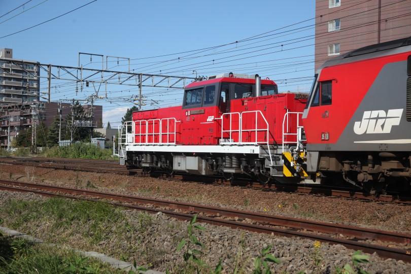 HD501IMG_7332-1.jpg