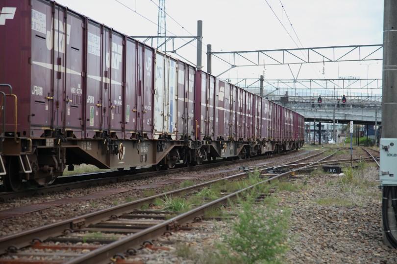 zentsuIMG_7029-2.jpg
