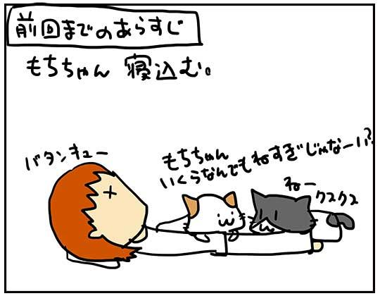 寝込むもちちゃんに集まる猫たち.