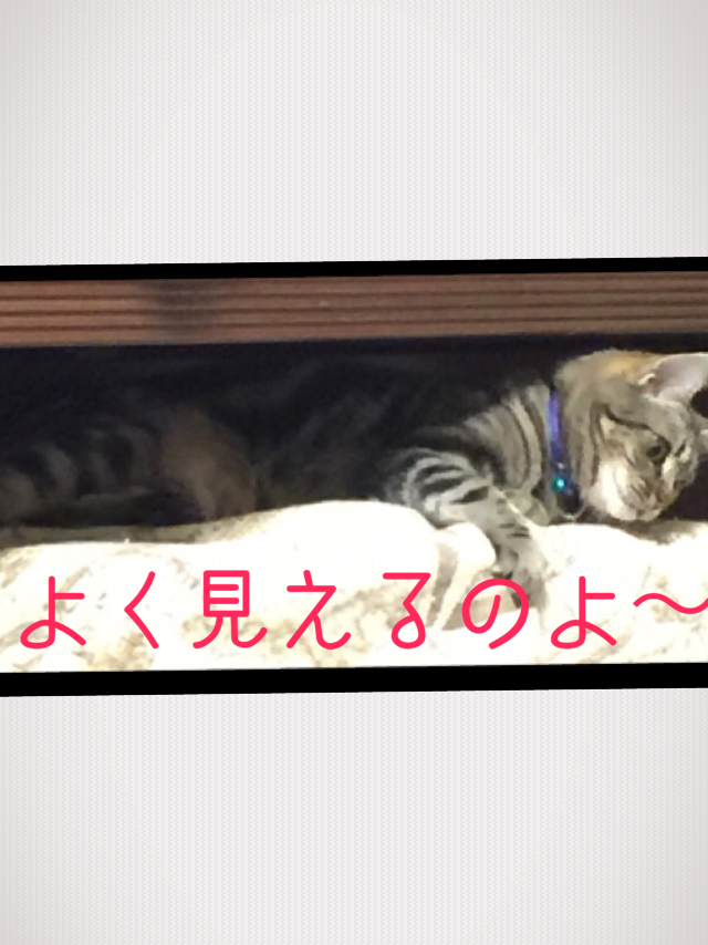 20160507004025831.png