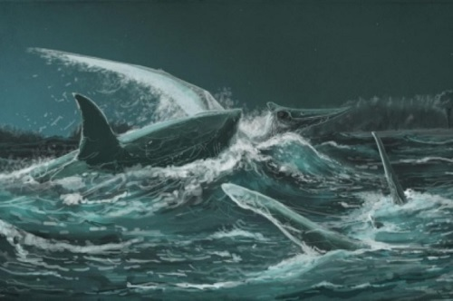 恐竜時代のサメは空飛ぶ翼竜も捕食していた!化石に歯の痕くっきり!