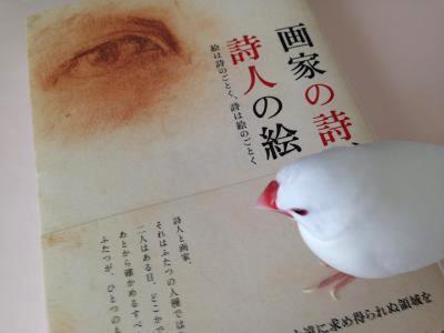 gakanoshi.jpg