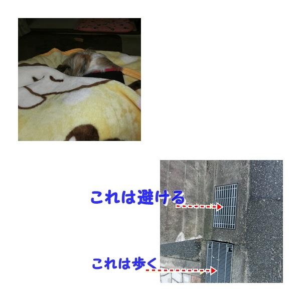 20161111144857353.jpg