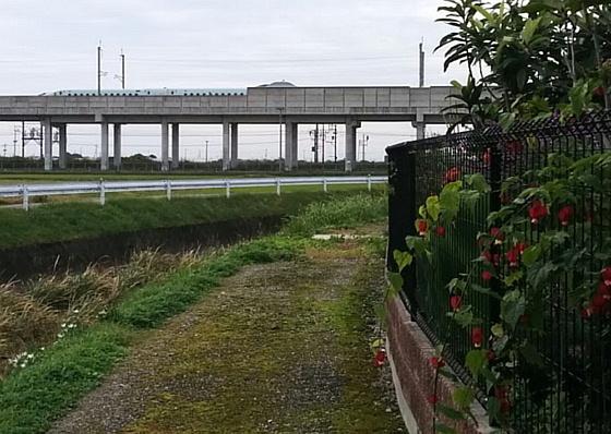 shinkansen-abchiron560x398.jpg
