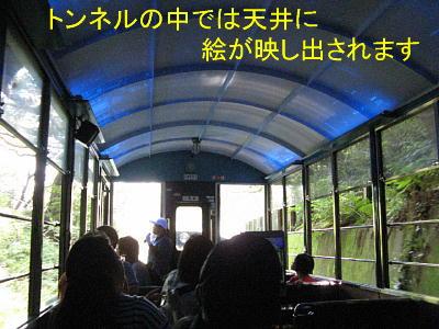 train4.jpg