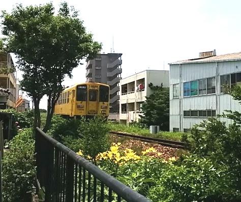 yuri-ydc125.jpg