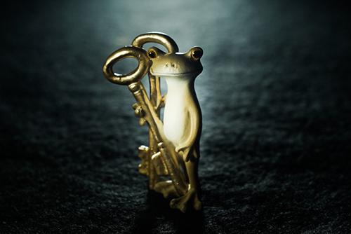 ツバキアキラが撮ったカエルのコポー。暗闇の中で光を浴びながら、鍵を持って佇んでいるコポタロウ