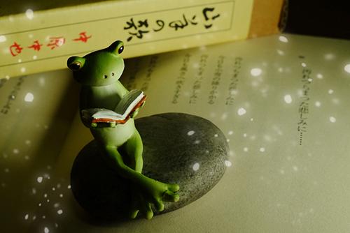 ツバキアキラが撮ったカエルのコポー。中原中也の詩を読んでいるコポタロウ。