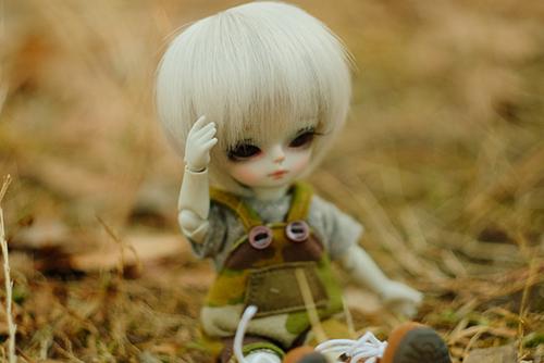 WITHDOLL、Happy Ending Story - Wolf Rudyのルディ。枯れ草の野原で、ちょっぴり寒そうな困り顔をしています。