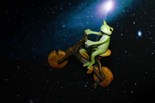 ツバキアキラが撮ったカエルのコポー。映画「E.T」のワンシーンのように夜空を自転車で飛ぶコポタロウ。