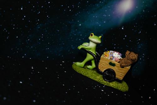 ツバキアキラが撮ったカエルのコポー。宇宙に花を届けるコポタロウとクマくん。