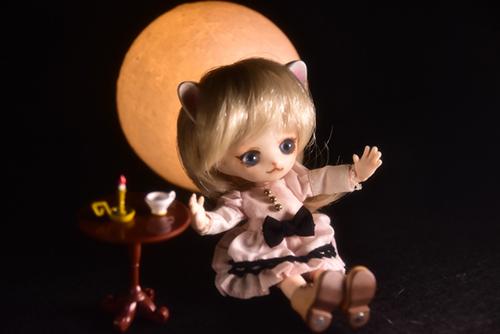 オビツ11ボディ、PARABOXヒカリちゃんヘッドをカスタムして作った猫っ子ポー。満月の夜に秘密のお茶会。
