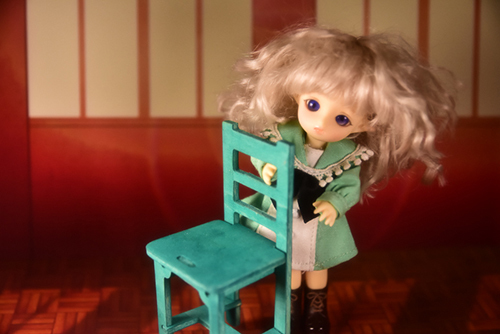 BrownieのMomoちゃん、夕日のさす教室で黄昏ています。