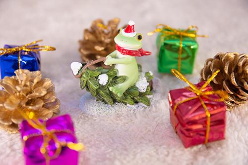 ツバキアキラが撮ったカエルのコポー。もみの木のソリで、クリスマスプレゼントを運ぼうとしているコポタロウ。