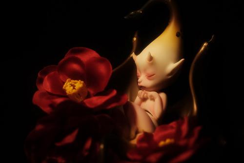 DOLLchateau・William AのRêve。お正月らしく、和の香りの漂う、赤い椿と一緒に。