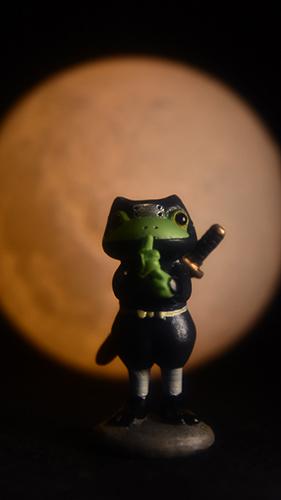 ツバキアキラが撮ったカエルのコポー。満月の夜の忍者コポタロウ。
