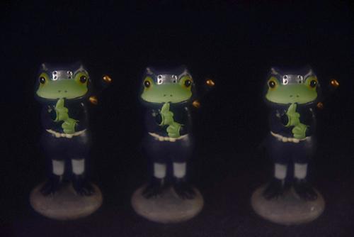 ツバキアキラが撮ったカエルのコポー。分身の術を使う、忍者コポタロウ。
