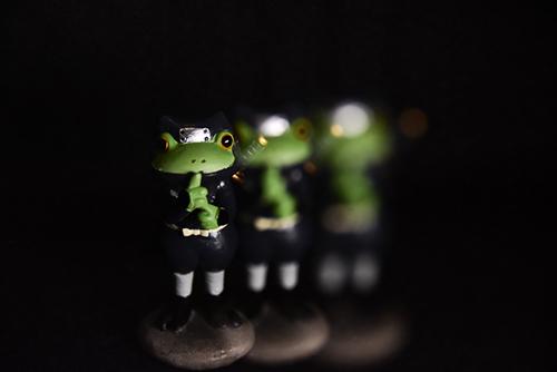 ツバキアキラが撮ったカエルのコポー。影分身の術を使う、忍者コポタロウ。