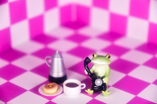 ツバキアキラが撮ったカエルのコポー。お茶とおやつを用意して、長電話に備えるコポタロウ。