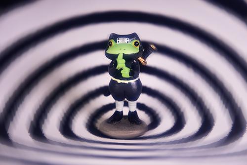 ツバキアキラが撮ったカエルのコポー。渦巻きの術を使う、忍者コポタロウ。