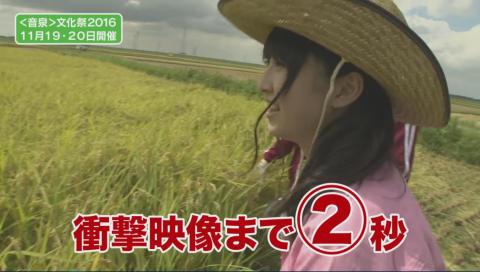 モグコミ&だれ?らじ コラボ企画 <音泉> 文化祭の為に私たちは米を刈り!そしてカレーを作る!