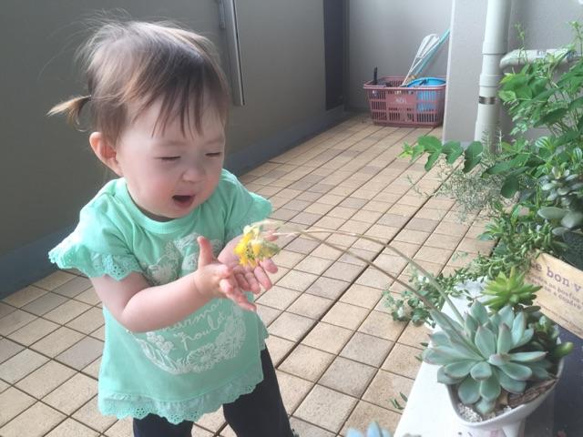 piyoko20160510-4.jpg