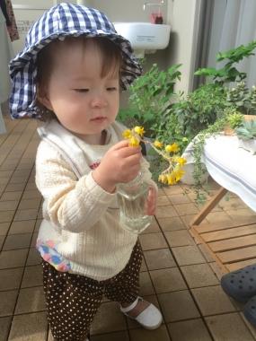 piyoko20160516-3.jpg
