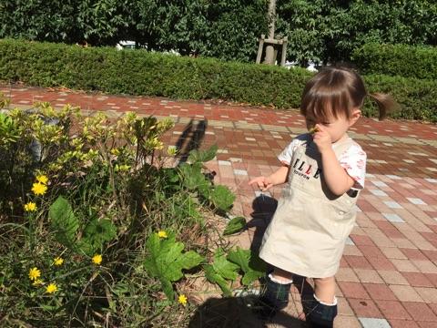 piyoko20161026-3.jpg